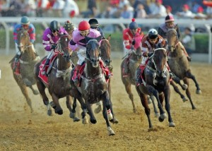 Belmont Stakes Internet Wagering