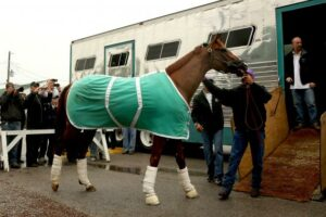 2015 Kentucky Derby Favorites